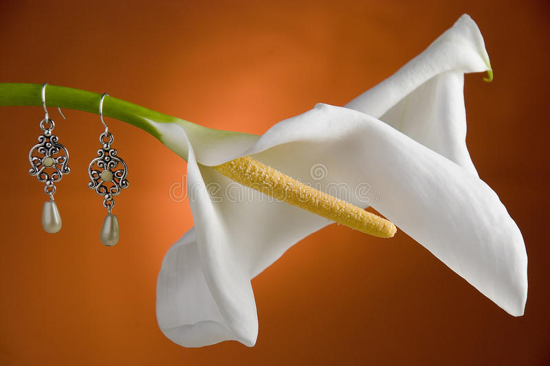 Flower with jewels stock photo