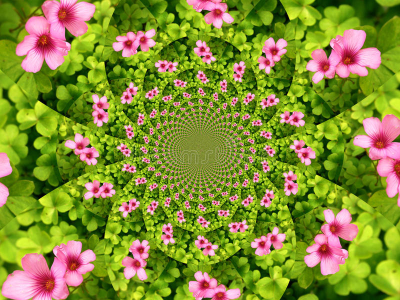Download Flower kaleidoscope stock image. Image of park, field - 40345433