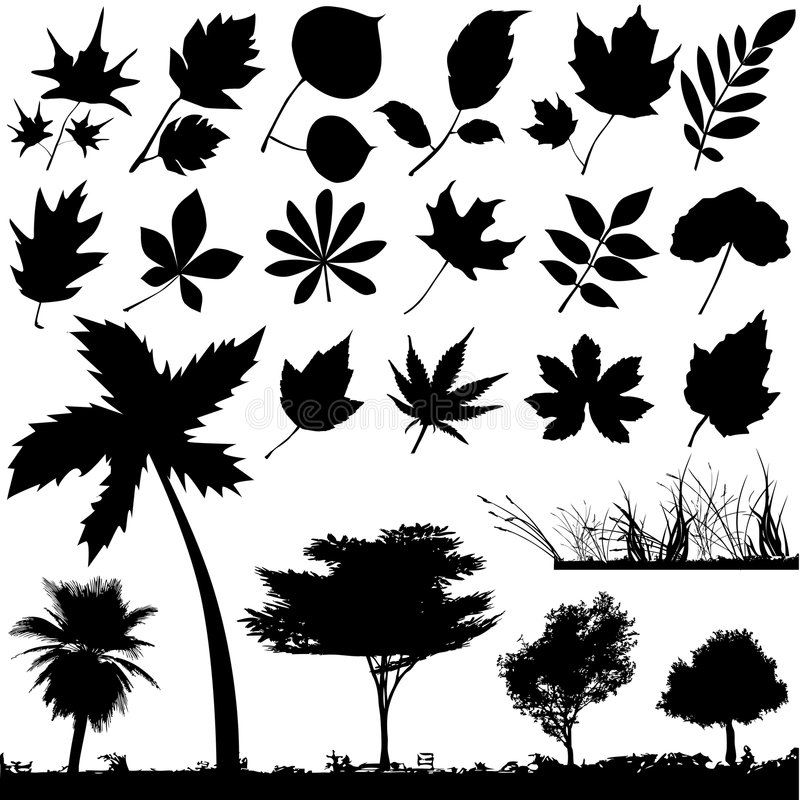 Flower, leaf and tree vector. Set of leaf and tree vector stock illustration