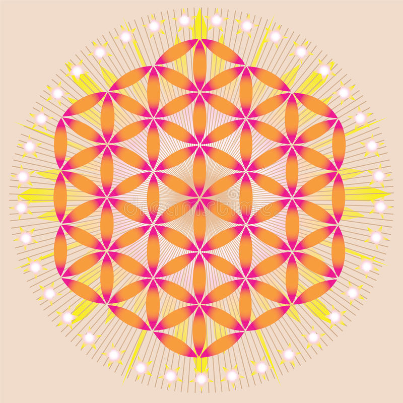 Flower of life in shining space stock illustration