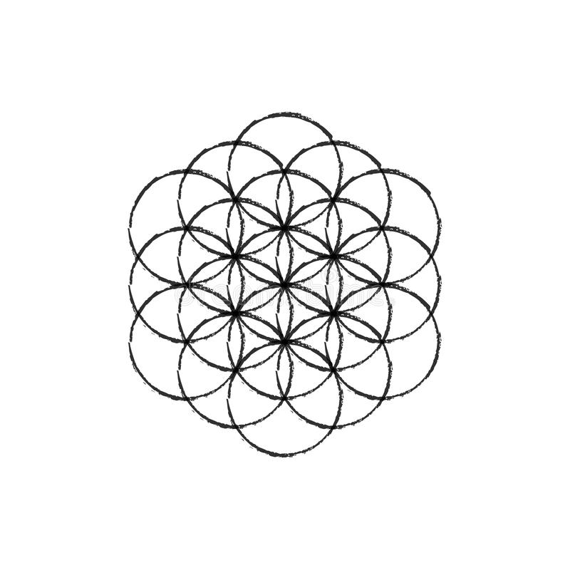 Flower of life vector.Line sketch icon royalty free stock image