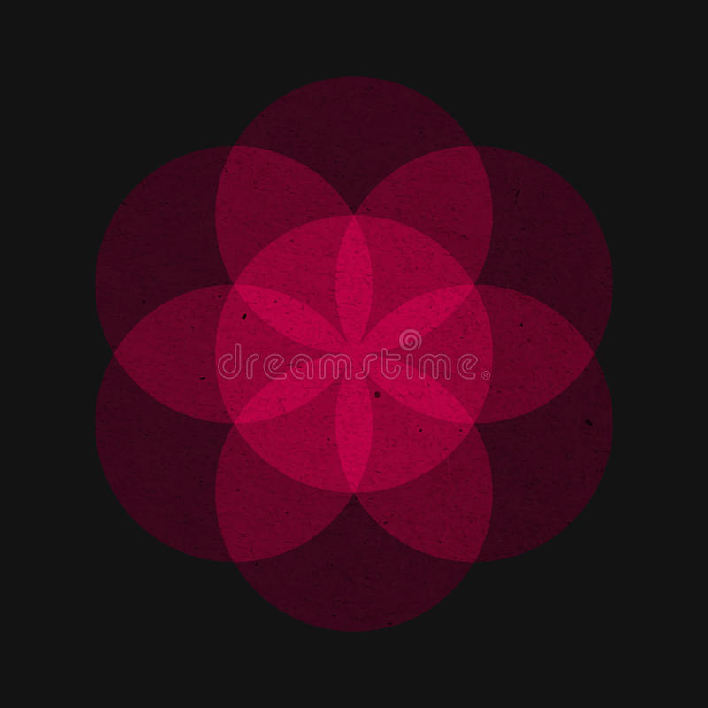 Flower of Life, vector. royalty free stock images