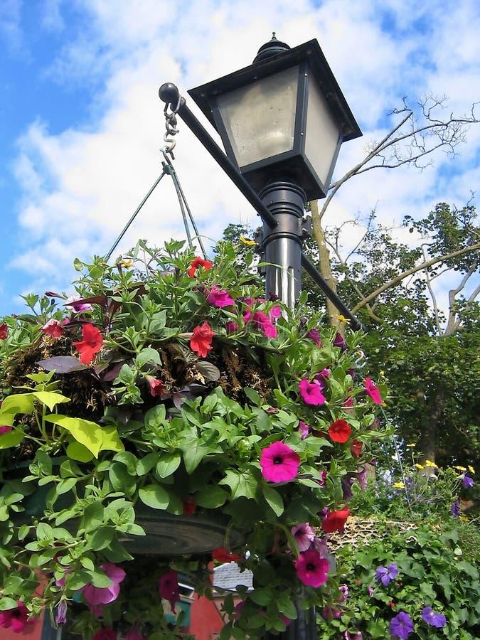 Flower Light Post stock photography