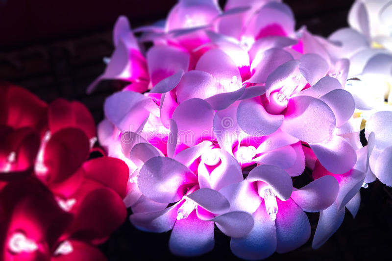 Flower lights glowing warmly in the dark in high contrast with c. Opy space. The soft glow of white and red tropical flowers creates good mood and emotion stock photo