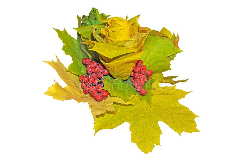 FThe flower is made from curled maple leaves and red berries of mountain ash is isolated on white stock images