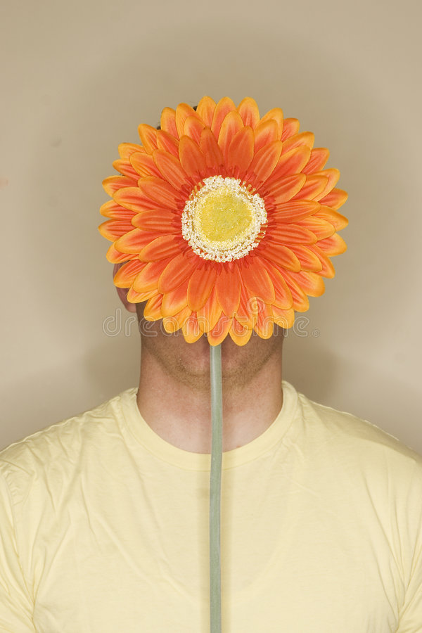 Flower with male body. Large orange flower is placed in front of man's face who's wearing a yellow shirt royalty free stock photography