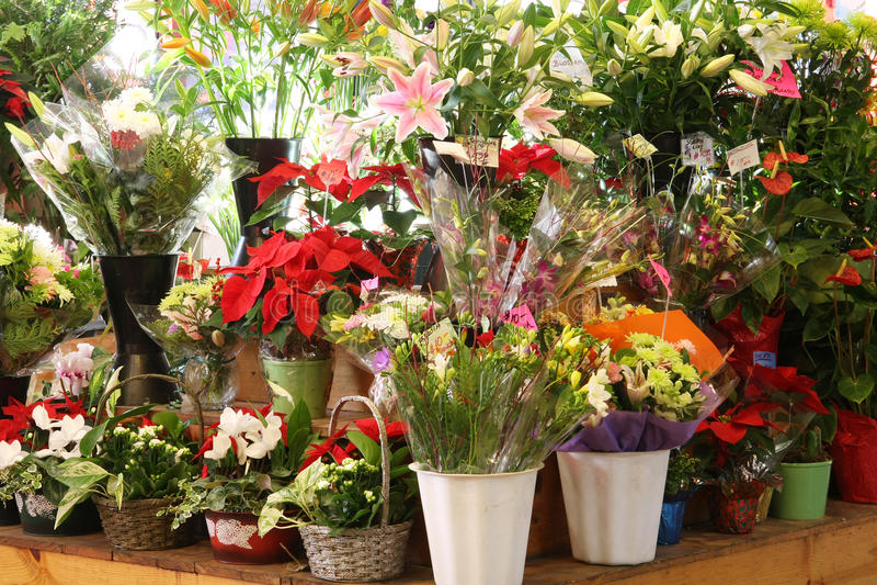 Download Flower market stock photo. Image of price, greenery, beautiful - 12052332