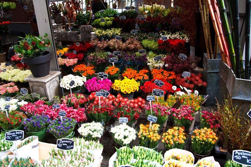 Download Flower market stock image. Image of netherlands, holiday - 8898887