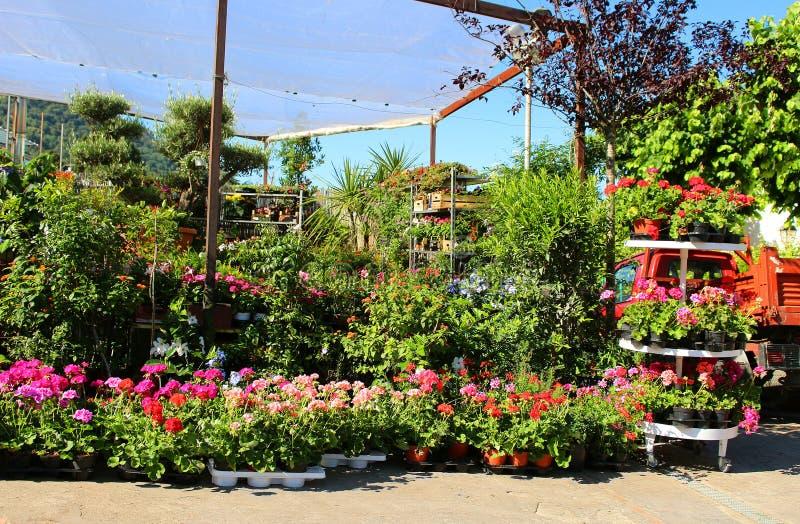 Flower market in Capri, Italy royalty free stock photography