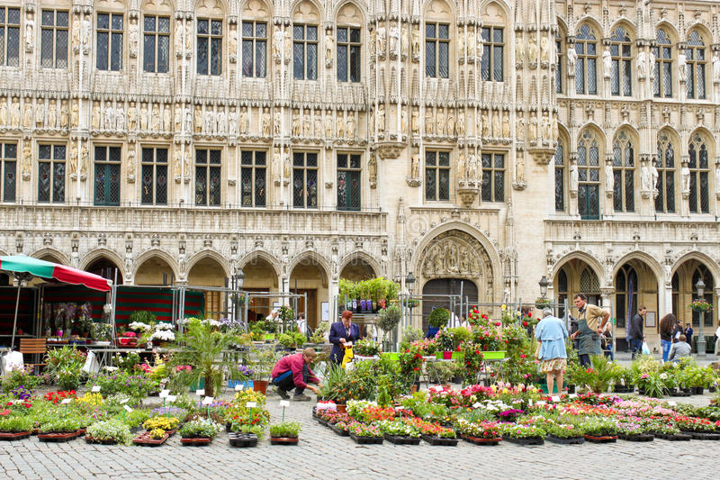 Flower market on Grand Place in Brussels, Belgium. royalty free stock photos