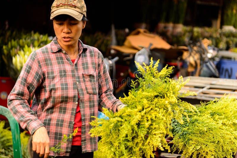 Flower market. HANOI, VIETNAM - SEP 23. 2014: Unidentified man works at the flower market in Hanoi, Vietnam. Flower market in Hanoi is one of the largest flower stock photography