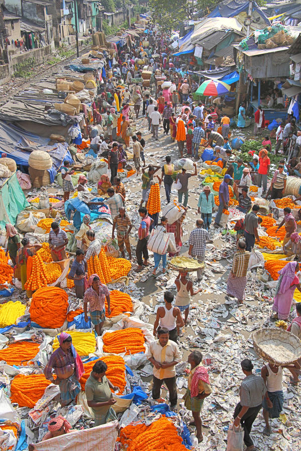 FLOWER MARKET. Kolkata`s Mullik Ghat flower market, near the Howrah bridge, is an incredible display of colourful flowers in a seriously chaotic & vibrant royalty free stock image