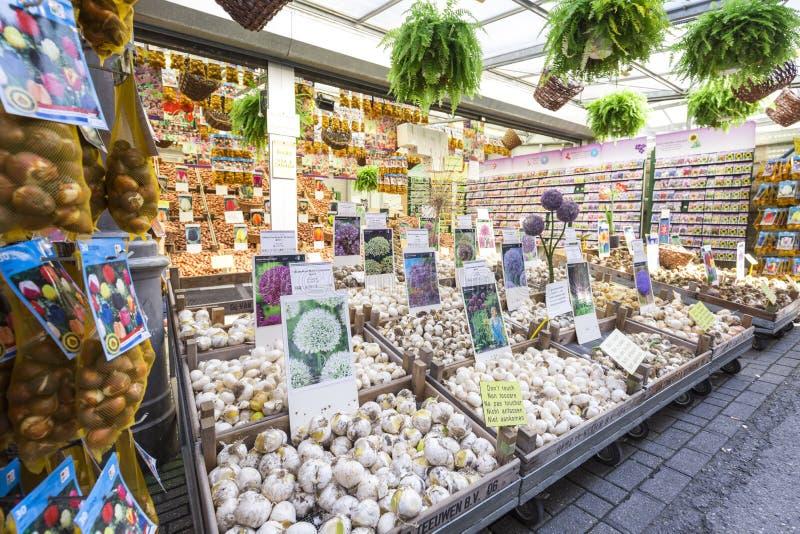 Flower market shop in Amsterdam stock image