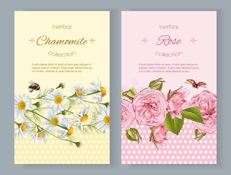 Flower natural cosmetics banners stock illustration