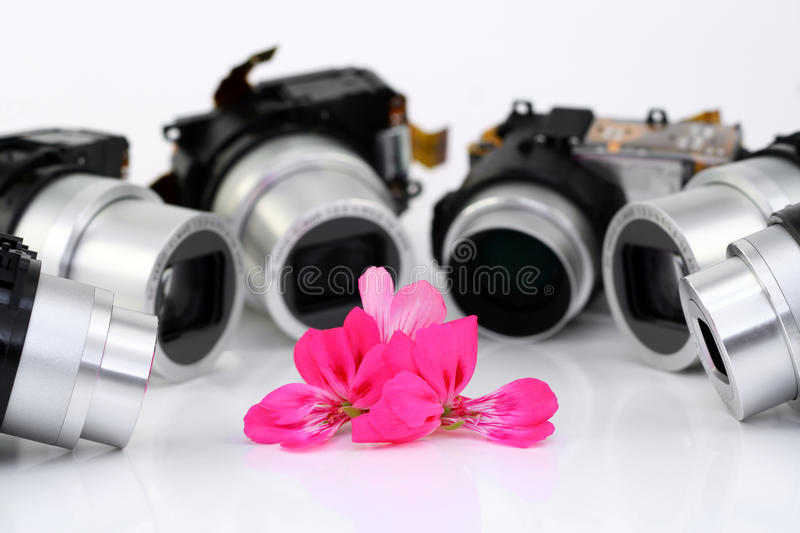 Flower and objectives of compact cameras. On a pink bright flower six objectives of modern mass compact cameras are directed. A lonely flower in an environment stock photos