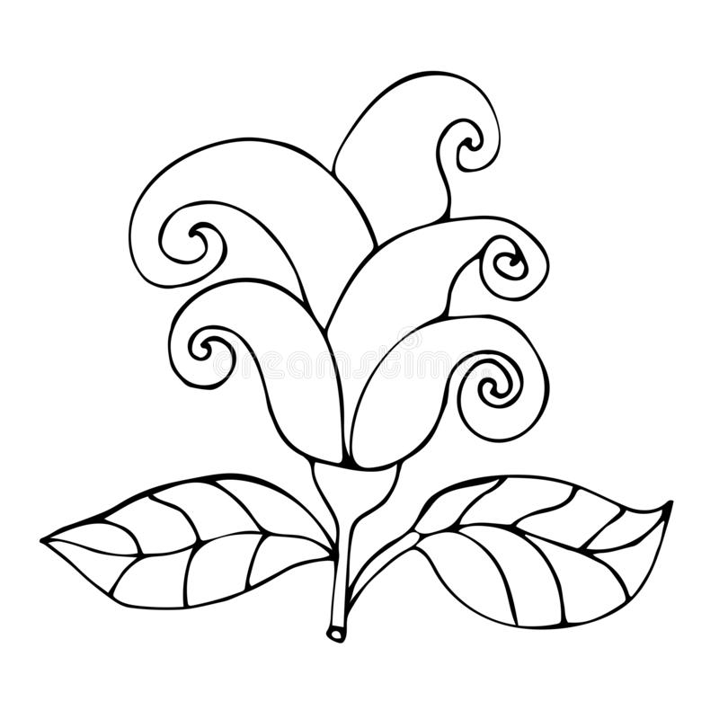 Outline fantasy flower with curly petals for coloring book for adults isolated. On white background. Vector illustration royalty free illustration