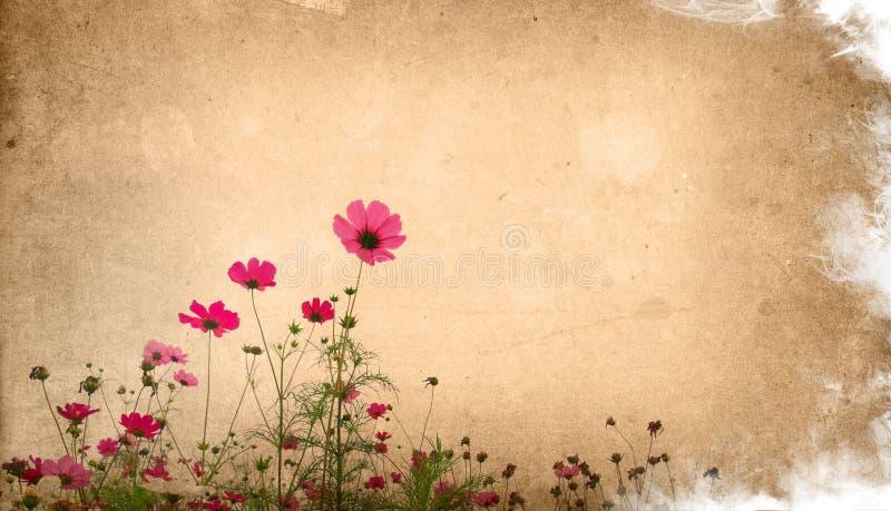 Flower paper stock photo