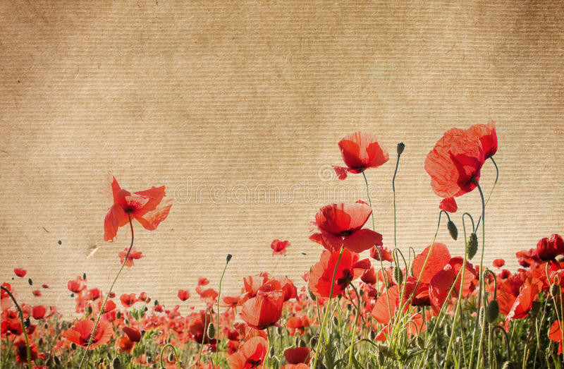 Flower paper textures. royalty free stock photo