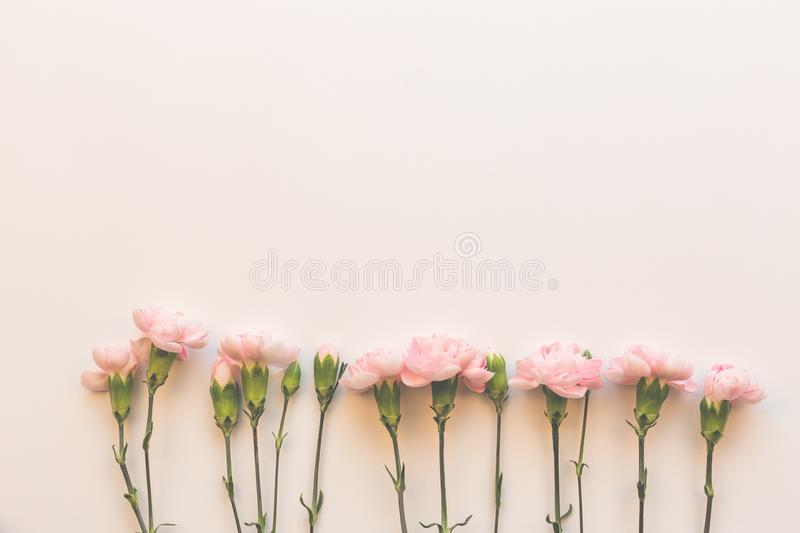 Flower pattern on the pink background stock photos