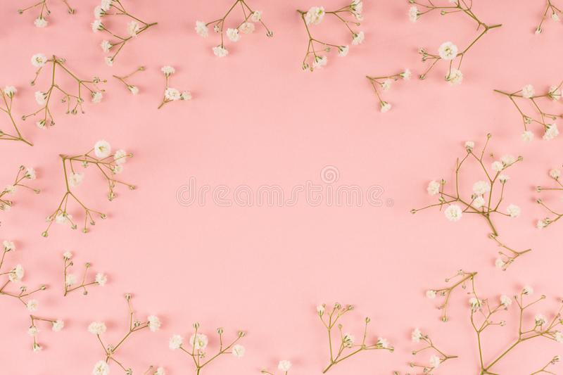Flower pattern on the pink background stock photo