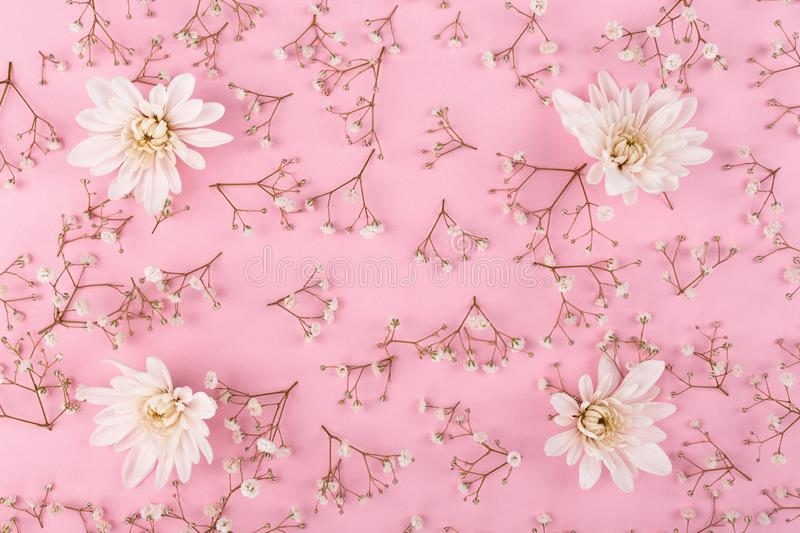 Flower pattern on the pink background royalty free stock image