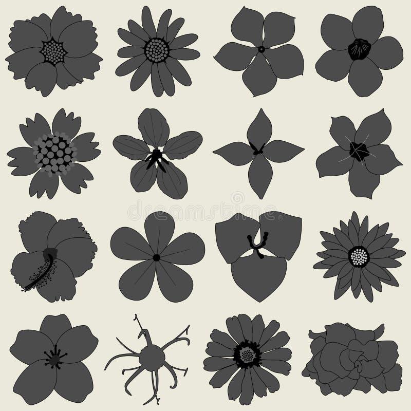 Flower petal flora icon stock illustration