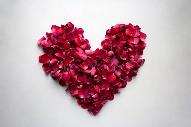 Flower petals heart shaped valentine from above stock images