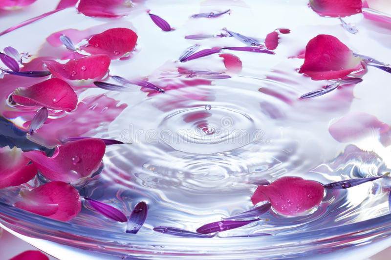 Spa Flowers Petals Water Drop Background. A drop of water in a glass bowl of water with rose and flower petals. Can be paired with image no. 30678383 stock images