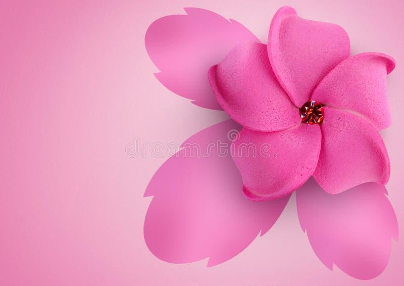 Flower on pink background