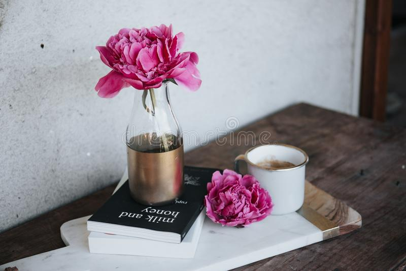 Flower, Pink, Cup, Vase royalty free stock image