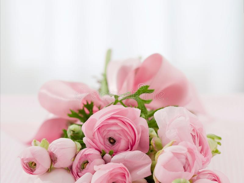 Flower, Pink, Rose Family, Flower Arranging royalty free stock photography