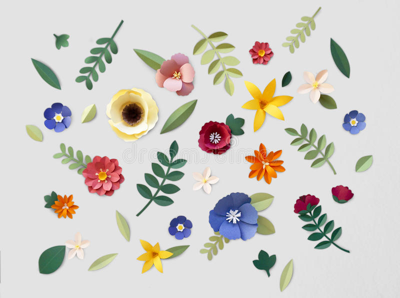 Flower Plant Floral Nature Designs royalty free illustration