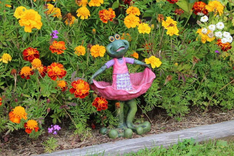 Flower, Plant, Garden, Flowering Plant royalty free stock photos