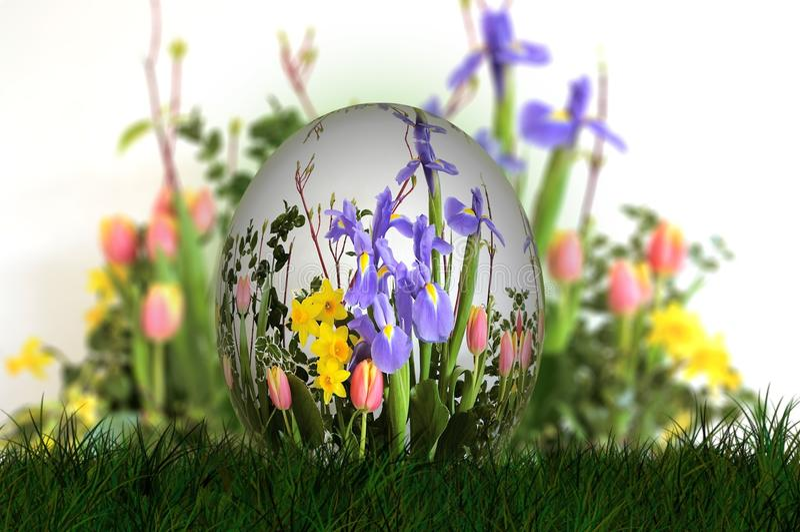 Flower, Plant, Grass, Spring stock photos