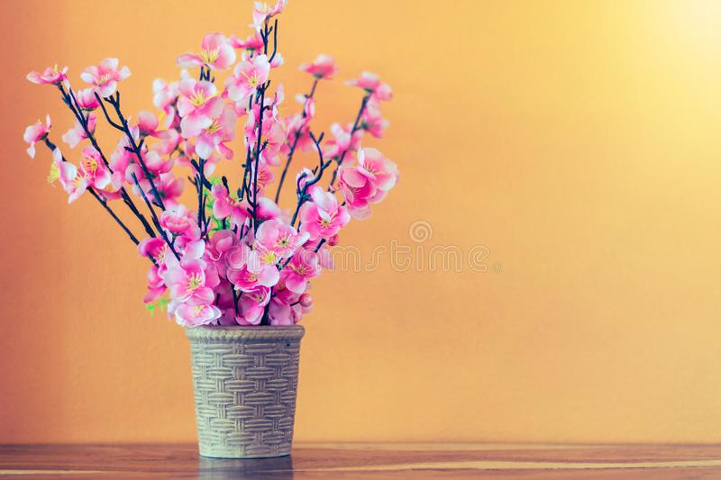 Flower and plant in pot on table royalty free stock photo