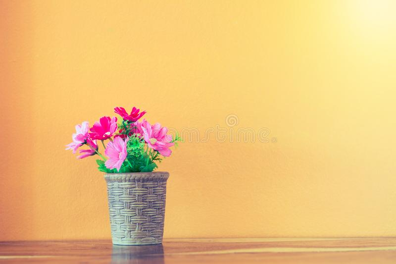 Flower and plant in pot on table. With colorful background stock photo