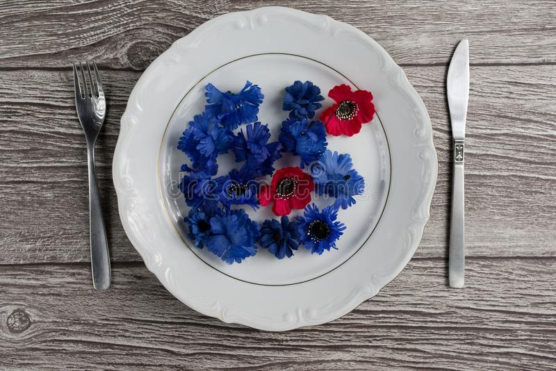 Flower on plate. Top view. Space for text stock photography