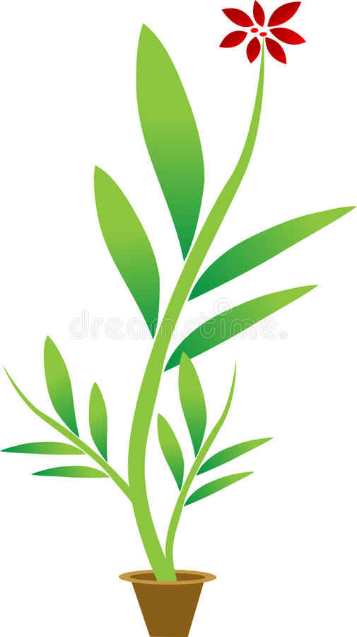 Download Flower Pot Stock Images - Image: 20885664