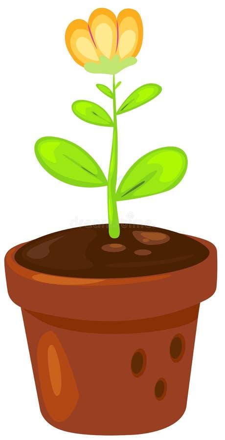 Download Flower in a pot stock vector. Illustration of color, fancy - 21477412