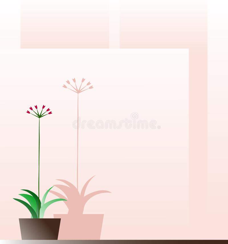 Flower in a pot on a pink background stock images