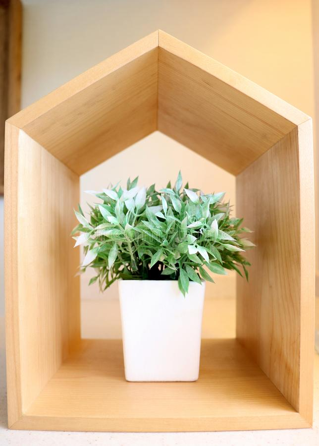 Flower pot and wooden box stock image. Image of flower - 100658055