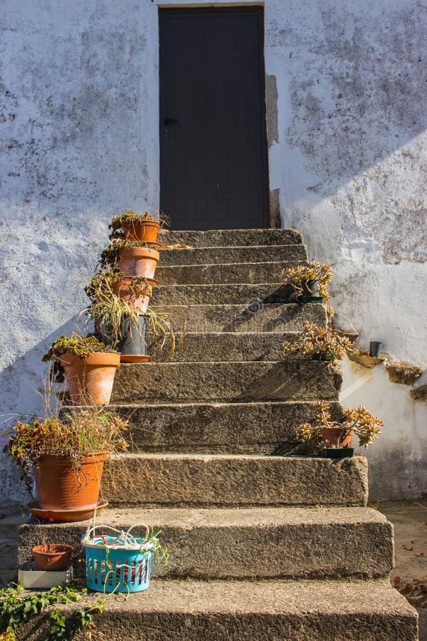 Flower pots nn outdoor stairs with close door. Patio design. Traditional backyard in Europe. Flowers on outdoor steps. Home entrance with flowers. Architecture stock image