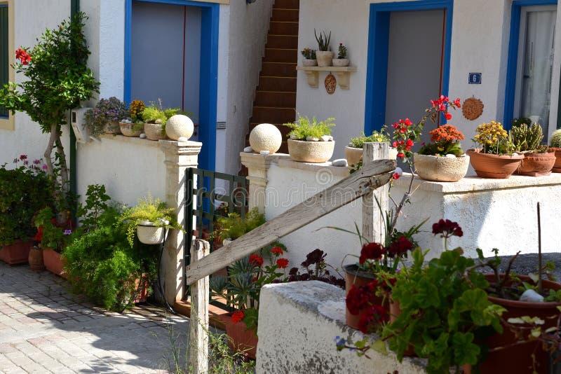 Flower pots plants. Garden with flower pots plants in Piskopiano on Crete in Greece royalty free stock photography