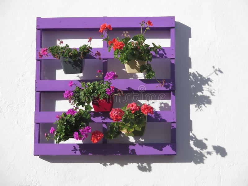 Purple pallet with flowers stock photos