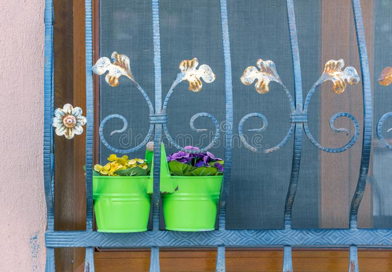 Flower pots stand on a window with iron bars royalty free stock images