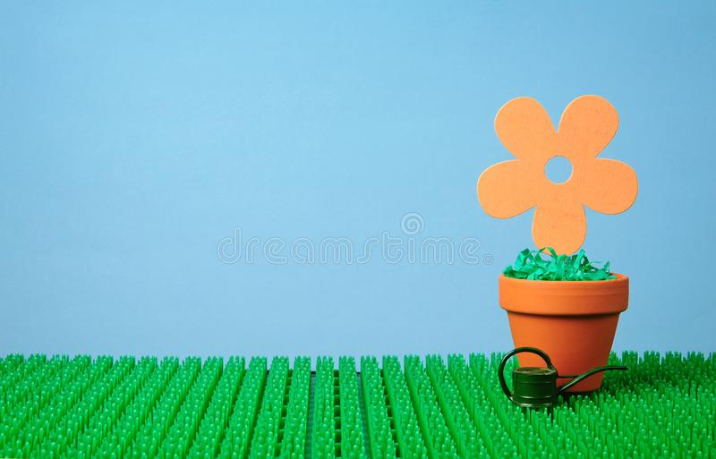 Flower potted in clay pot royalty free stock image
