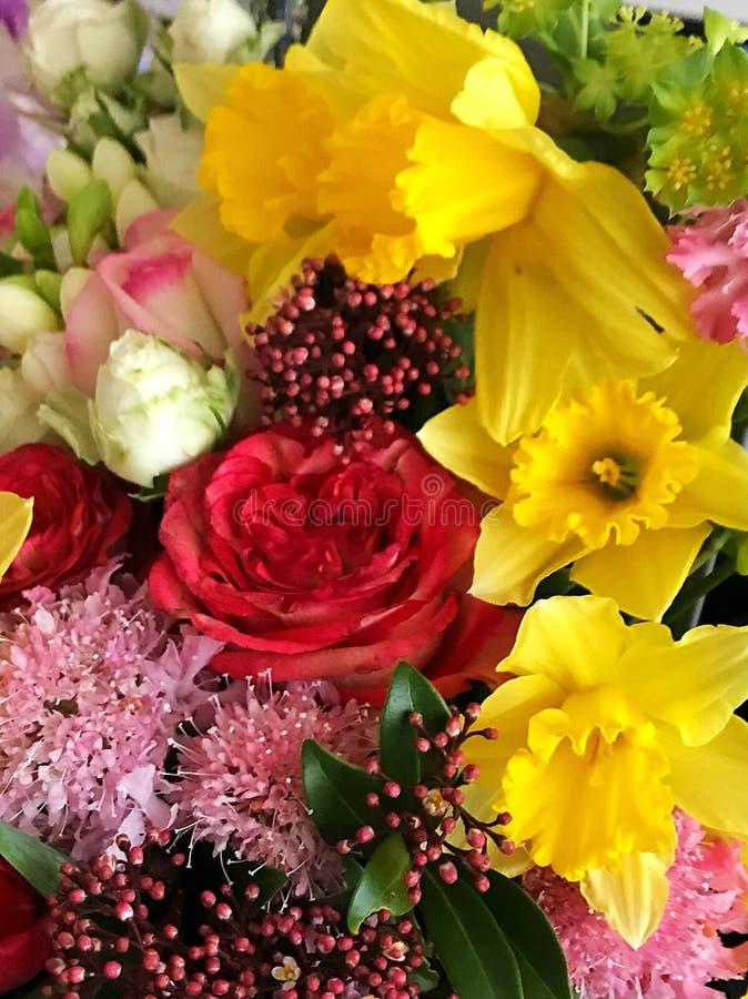 Flower power fotografia stock