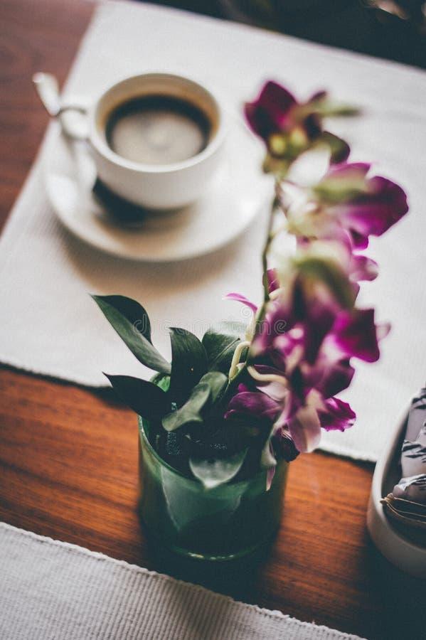 Flower, Purple, Coffee Cup, Tableware stock image