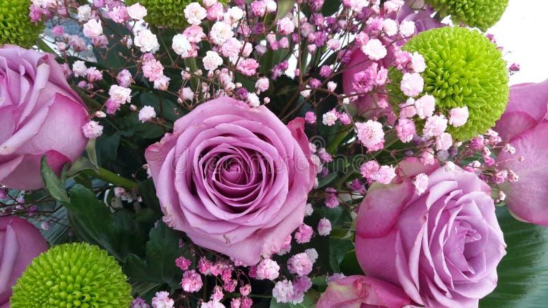Flower rose 100. Flower rose bouquet, green flower royalty free stock photos