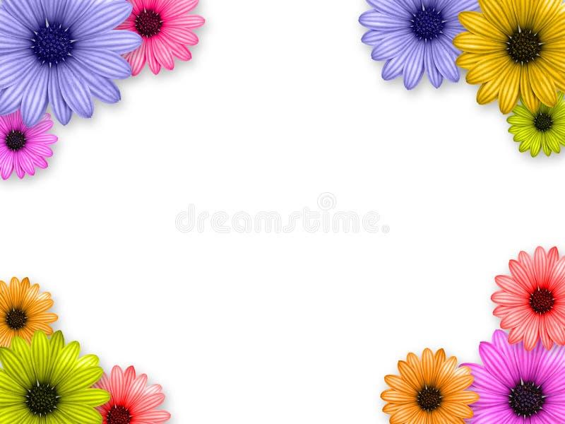 Flower's frame. On white background royalty free illustration
